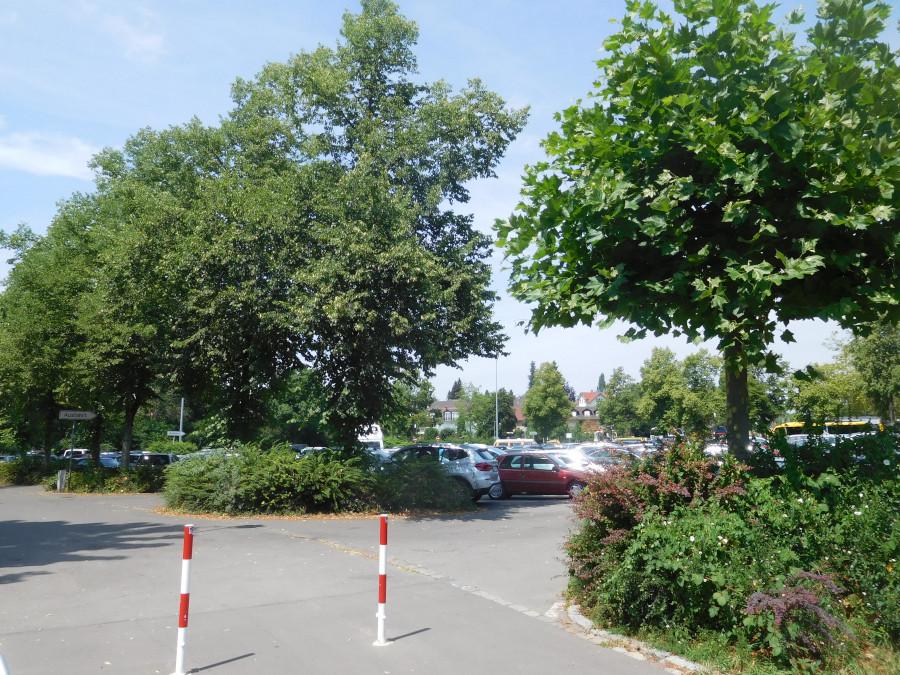 Bürgerbegehren Karl-Bever-Platz